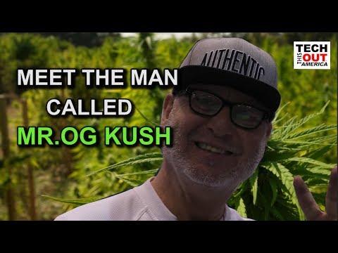 Meet the Man Called Mr. OG Kush!!